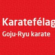 KaratefelagRey_1000x250